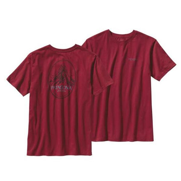 Patagonia Men's Mountain Frame Tee Shirt