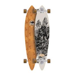 Arbor Fish Bamboo Complete Longboard