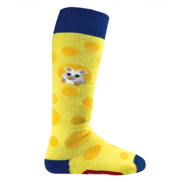 Burton Children's Minishred Socks