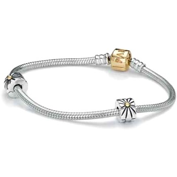 PANDORA Two-Tone Iconic Bracelet Gift Set