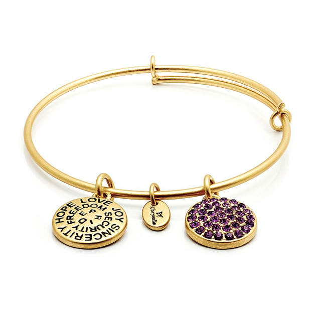 FEBRUARY Amethyst Crystal Bangle - Chrysalis Good Fortune Collection