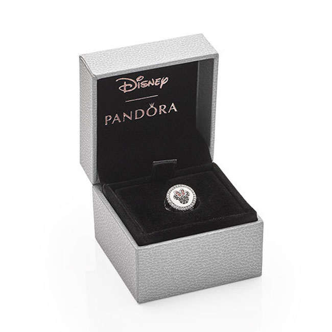 pack of pandora charms