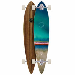 Arbor Timeless Photo Longboard