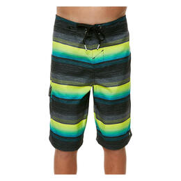 O'Neill Boy's Santa Cruz Stripe Boardshorts