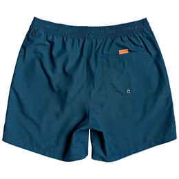 Quiksilver Men's Everyday Volley 17 Shorts