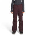 The North Face Women's Freedom Snow Pants