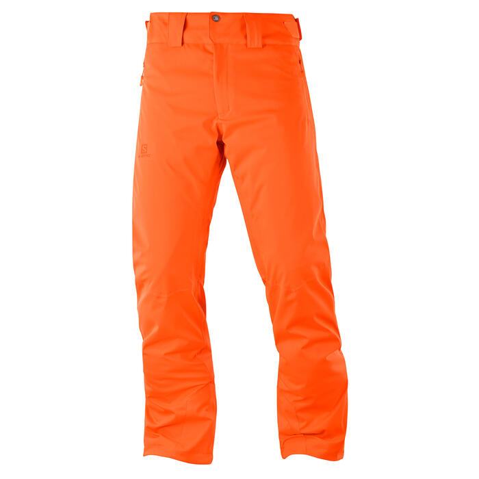 Salomon Men's Stormrace Ski Pants