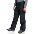 Quiksilver Men's Porter Snow Pants alt image view 6