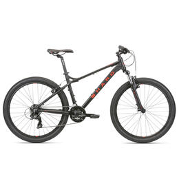 Haro Men's Flightline One Mountain Bike '20