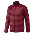 Adidas Men's Flyloft Insulated Jacket
