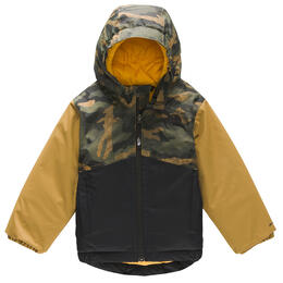 The North Face Toddler Boy's Snowquest Insulated Jacket