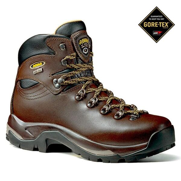 Asolo Men's Backpacking Boots: TPS 520 GV GTX® Backpacking Boots
