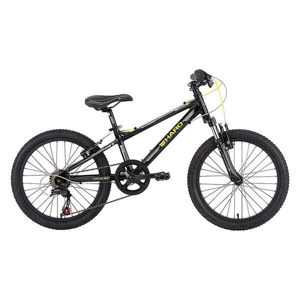 Haro Children's Flightline 20 Hardtail Mountain Bike '13