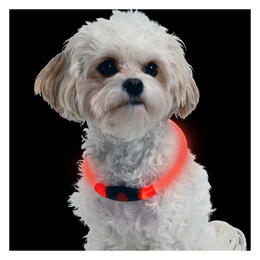 Nite Ize Nitehowl Led Safety Necklace