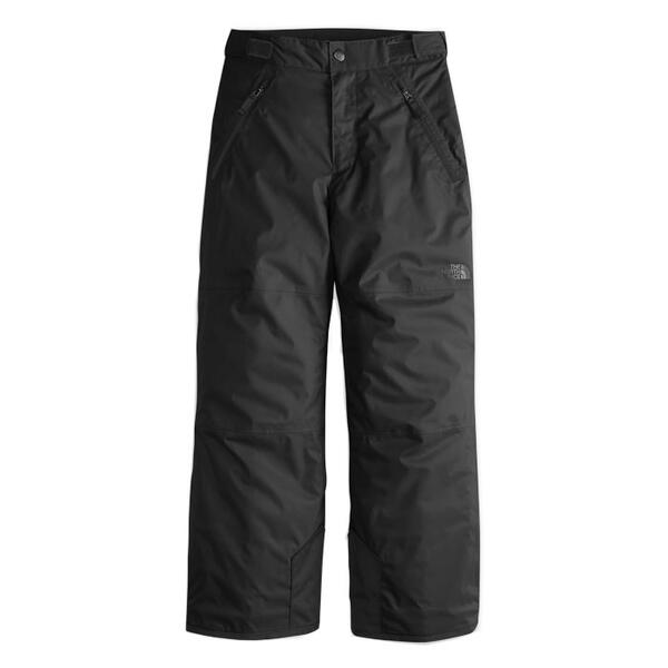 The North Face Boy's Freedom Insulated Pants