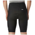 Giro Men's Chrono Sport Cycling Shorts