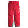 The North Face Boy's Freedom Insulated Ski