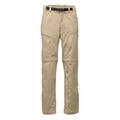 The North Face Men's Paramount Trail Conver