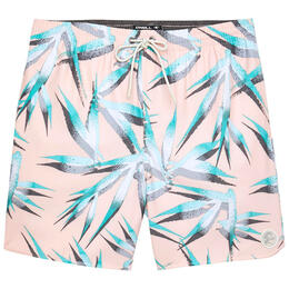 O'Neill Men's Birds Volley Boardshorts