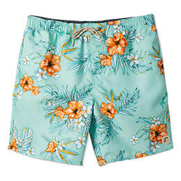 O'neill Men's Seabreeze Volley Boardshorts