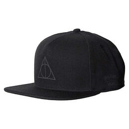 Vans Men's Harry Potter Snapback Hat
