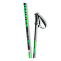 Salomon Men's X 08 Ski Poles '17