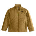 The North Face Boy's Harway Snow Jacket