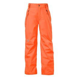 The North Face Boy's Freedom Insulated Snow Pants