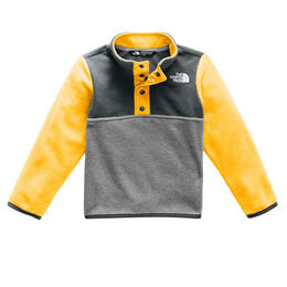 The North Face Toddler Boy's Glacier 1/4 Snap Shirt