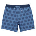 Rvca Men's Eastern Elastic Boardshorts