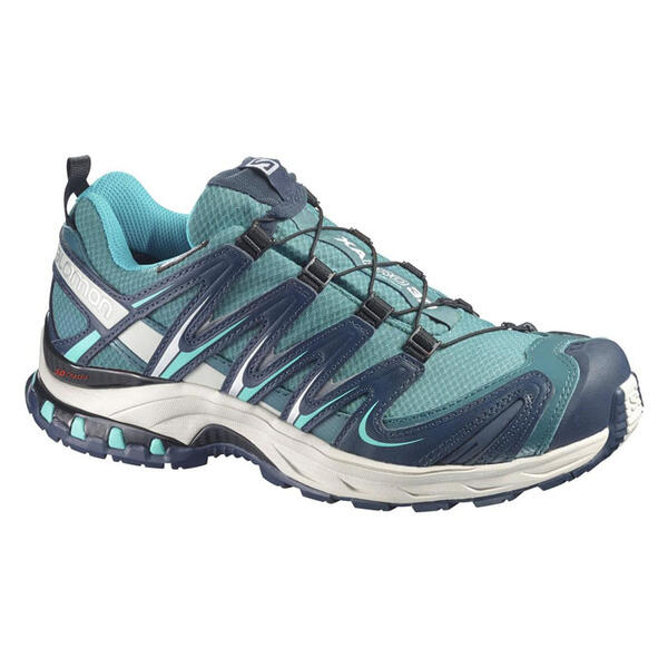Salomon Women's Xa Pro 3D CS WP Trail Runni