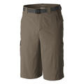 Columbia Men's Silver Ridge Stretch Shorts