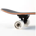 Sector 9 Hair Barrel Hopper Complete Skateb