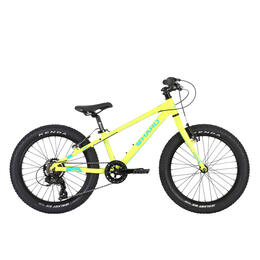Haro Boy's Flightline 20 Plus Mountain Bike '18