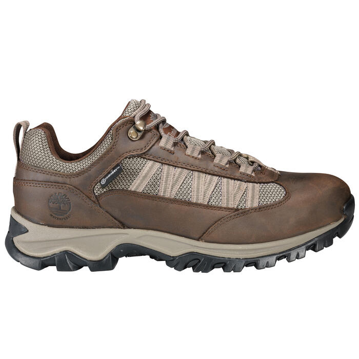 Timberland Men's Mt. Maddsen Low Hiking Sho