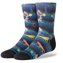 Stance Youth Desert Dinos Boys Socks