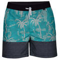 Hurley Men's Aloha Only Volley Boardshorts