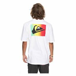 Quiksilver Men's Ce Soir Short Sleeve Tee Shirt