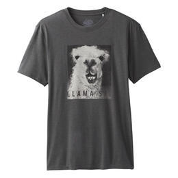 prAna T-Shirts & Tops