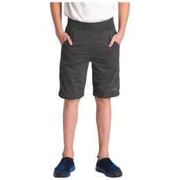 The North Face Boy's Tri-blend Shorts