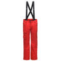 Spyder Men's Sentinel Pants