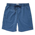 Billabong Men's All Day Layback Swim Shorts