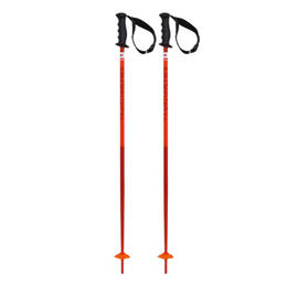 Volkl Phantastick Junior Ski Poles '17