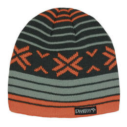Snow Dragons Boy's Astro Beanie