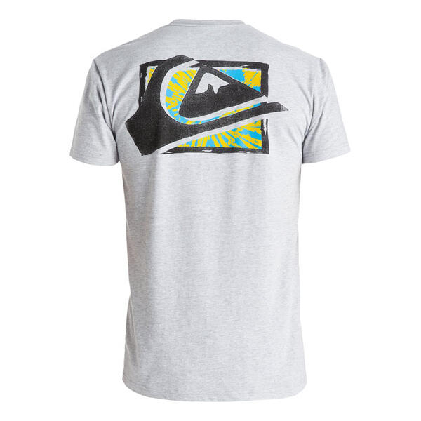 Quiksilver Men's MW Spray T-Shirt