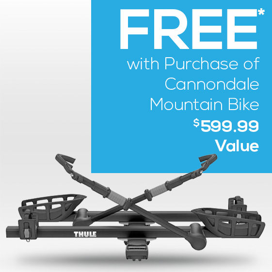 Free Thule bike rack with purchase.