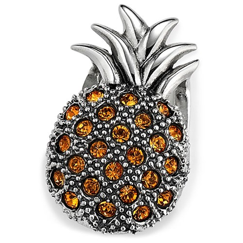 Lori Bonn Pineapple Princess Slide Charm