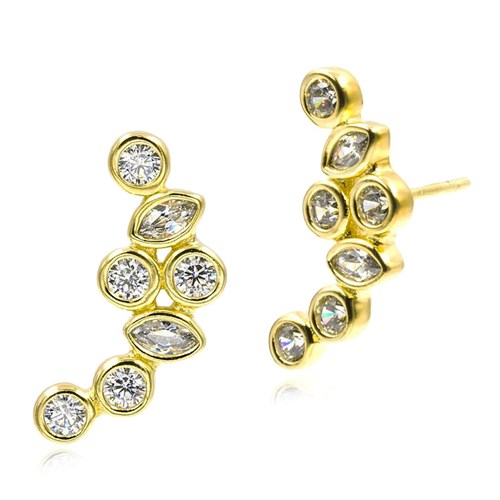 Freida Rothman Cluster Stone Climber Earrings