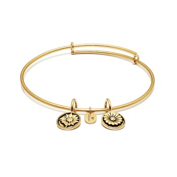 BELIEVE Bangle - Chrysalis Life Collection