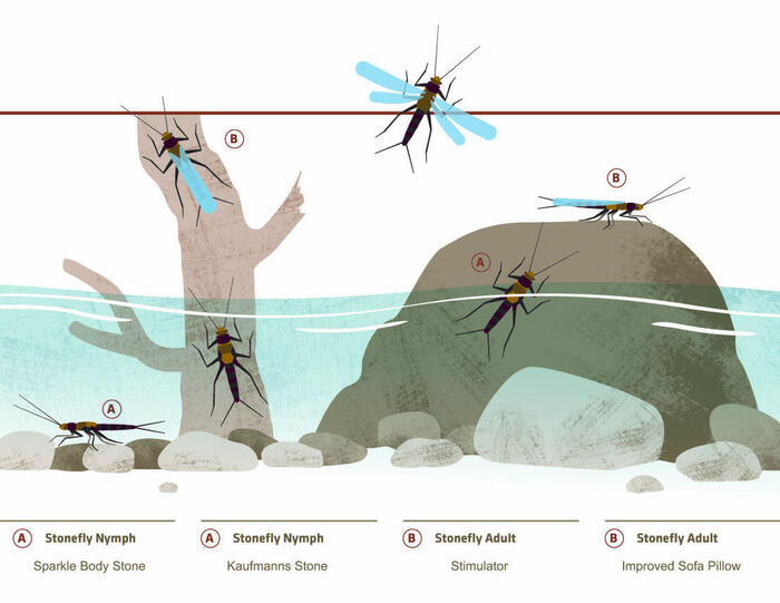 Stonefly Hatch